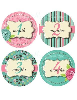 Monthly Baby Stickers Pink Green Floral Dots Milestone Bodysuit Month Photo GIFT