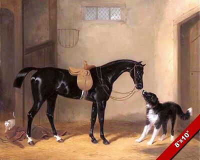 The Black Hunter Horse In Saddle & Dog Oil Painting Art Real Canvas Giclee Print