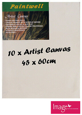 "10pcs Paintwell Artist Stretched Canvas 18x24"" Heavy Duty 38mm Thick - SCS-1824B"