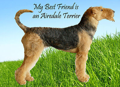 Airedale Terrier Dog Fridge Magnet, My Best Friend is an Airedale Terrier