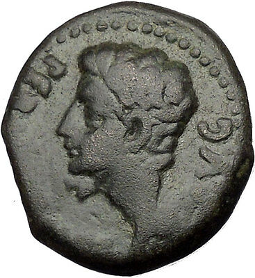 Augustus Colonia Patricia (Corduba) Spain Large Rare Ancient Roman Coin i43953