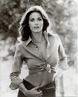 LYNDA CARTER unsigned 8x10 photo         YOUNG+GORGEOUS   VERY SEXY ABS