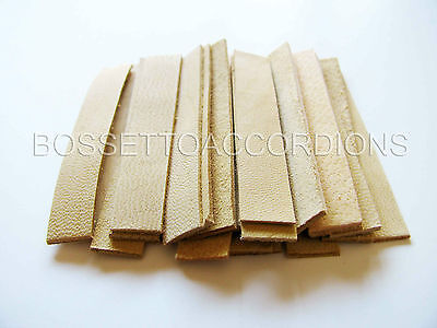 Accordion REED LEATHER LEATHERS VALVES SET OF 24 Size 1 Ventile für Akkordeons