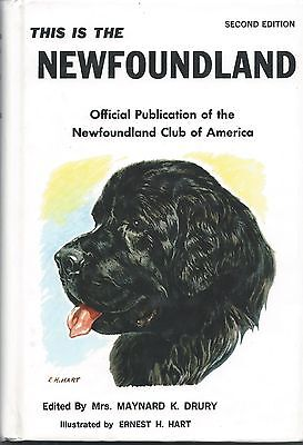 Dog Book-THIS IS THE NEWFOUNDLAND-Drury-HB2E78-PHOTOS-Official Book of NC of A