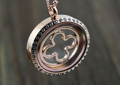 HOT sell 2014 Window rose gold Plate FOR FLOATING CHARM GLASS 30mm LOCKETS/e1622