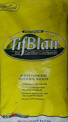 Tifblair Centipede Grass Seed - 25 Lbs. (Certified)