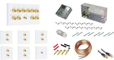 Dolby 5.1 Audio Speaker Wall Face plate Contractors kit - Standard Version