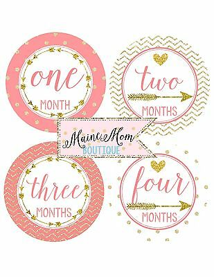 Baby Girl Milestone Month Monthly Stickers Coral Arrow Gold Glitter Shower Gift
