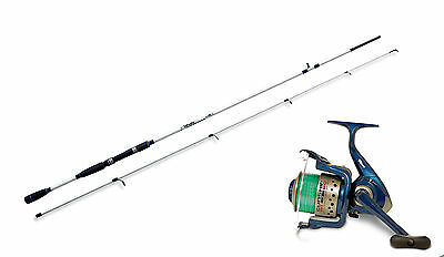 Lineaeffe Saltwater spinning rod & Gunship 030FD Reel combo Choose from 4 sizes.