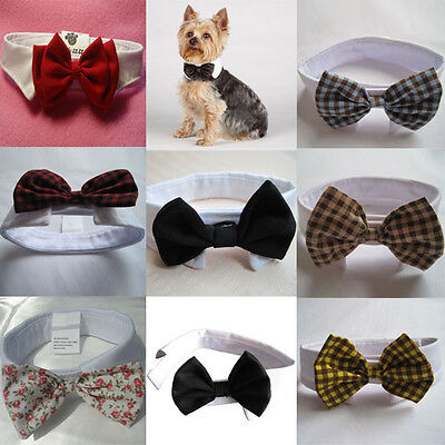 Fashion Adjustable Bow Tie Collar Dickie Necktie Bowknot For Pet Cat Dog
