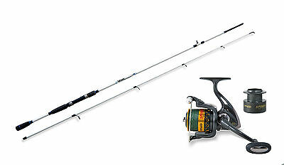 Lineaeffe Saltwater spinning rod & Braid Spin 50FD Reel combo Opt  4 Rod sizes.
