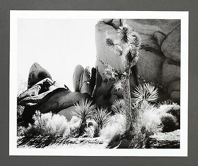 Robert Werling Photo Kunstdruck Art Print 43x35cm Rocks Landscape Desert B&W SW