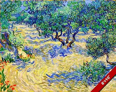 Vincent Van Gogh Olive Orchard Trees Painting Art Real Canvas Print