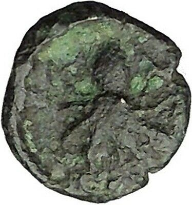 Sicily SYRACUSE Onkia Nymph Arethusa & Octopus Rare  Ancient Greek Coin  i46024