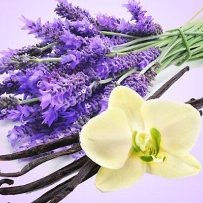Lavender Vanilla Fragrance Oil Candle/Soap Making Supplies ***Free Shipping***