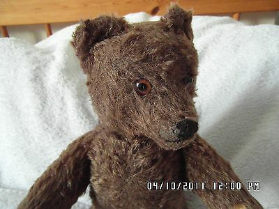 "RARE VINTAGE 12"" EARLY 1950s BROWN WITH BUTTON IN EAR STEIFF BEAR ALL AGES."