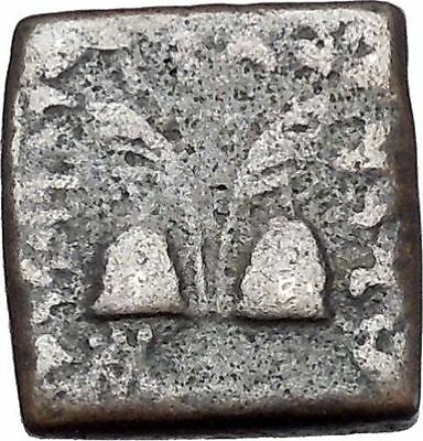 ANTIALKIDAS 145BC Baktrian Indo- Greek Ancient Coin of India Zeus Gemini i46912