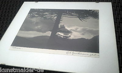 Robert GERSTMANN 1896-1964 signed & titled Photograph : Chile - Tolhuaca