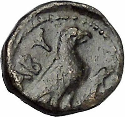 ABYDOS in TROAS 300BC Ancient Greek Coin APOLLO Cult Eagle wings closed i47313