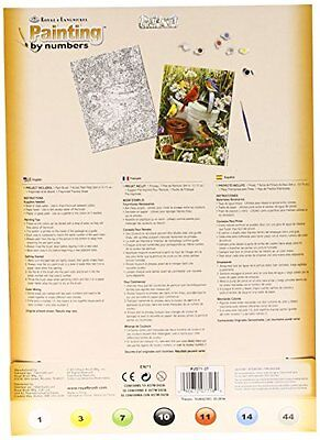 NEW Royal & Langnickel Garden Birds Design Paint by Numbers Kit