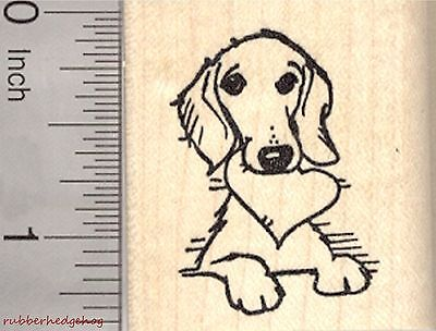 Valentine's Day Dachshund Rubber Stamp, Dog with Heart in Mouth  D27006 WM