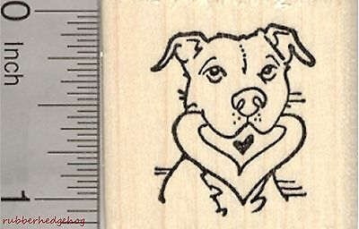 Pitbull Valentine Rubber Stamp, Dog with Heart in Mouth, Staffordshire D27015 WM