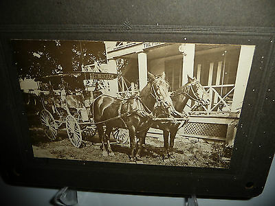 antique vtg real photo  horse and carriage  couch for  THE PINES  N J