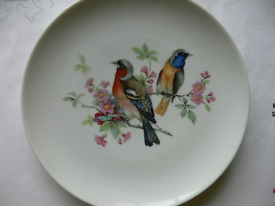 Kaiser Plate (AK), Finch bird motif, 19 cm diameter, genuine, perfect item