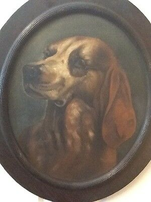 Vtg Oval Oil Painting Of A Dog/Hound