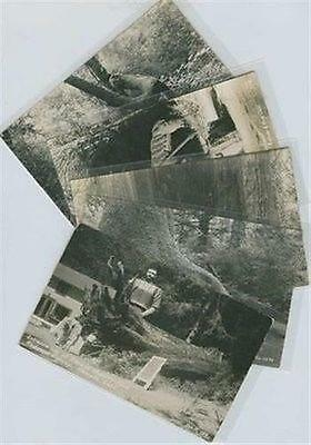 """Lot of 5 Real Photo Postcards of Redwood Hwy, CA """"Trees of Mystery"""" Park"""
