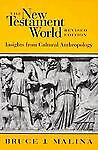 The New Testament World: Insights from Cultural Anthropology, Malina, Bruce J.,