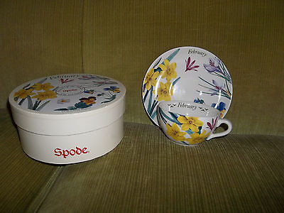 ~SPODE ~ February Flowers of ther Month Cup & Saucer Set, MIB.