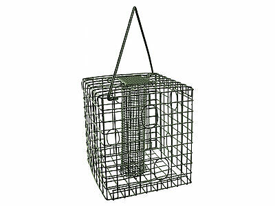Wild Bird Caged Feeder Squirrel Resistant in Seed, Nut, Mealworm & Fatcake types