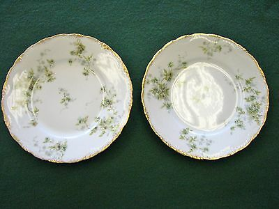 """Antique Theodore Haviland French Limoges China RARE PATTERN Two (2) 8"""" Plates"""