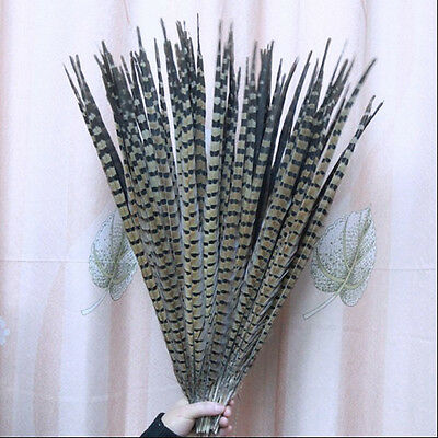 Free shipping 20Pcs pheasant feathers high quality 16-18inch