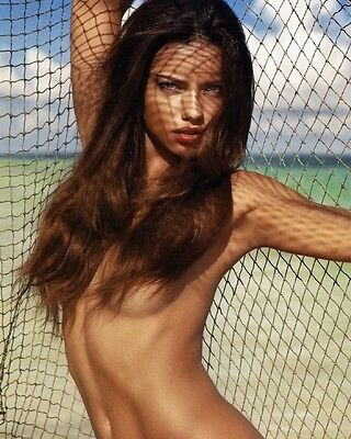 Adriana Lima 8x10 Hollywood Celebrity Photo. 8 x 10 Color Picture #188