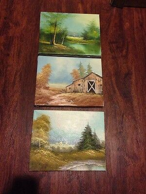 Original Paintings Set Of 3 Scenic Acrylic  Oil Canvas Hand Stretched Gorgeous