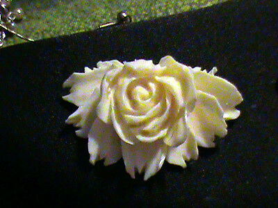 3 AMAZING Detail Simulated Ivory Rose VINTAGE Awesome 2  x 1 1/2 Inch MUST SEE