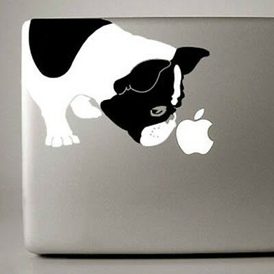 French Bulldog Large Black & White Decal - NEW - FREE SHIPPING - Mailed next day