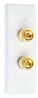 White Architrave Speaker Wall Face Plate 2 Gold Binding Posts
