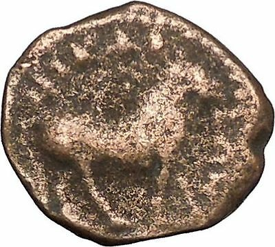 Elagabalus Nicaea in Bythinia Authentic Ancient Roman Coin BULL i49366