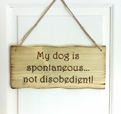 Driftwood Style Personalised My Dog... Wooden Sign Plaque Any Text Possible!