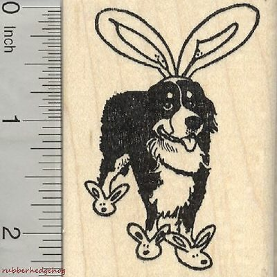 Easter Bernese Mountain Dog Rubber Stamp, Bunny Ears and Slippers   J27202 WM
