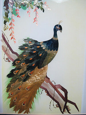 Unusual Peacock Painting Done with Wood Chips/Slivers on Silk Backing Framed yqz