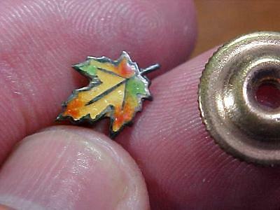 Awesome Fraternity Maple Leaf Canadian Society Screwback Antique Pin  (13J1)