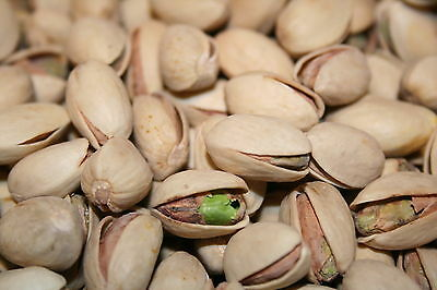 Pistachios Roasted Unsalted, 10Lbs