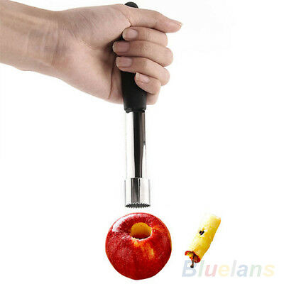 Top Fashion Twist Core Seed Remover Fruit Apple Corer Pitter Seeder Kitchen Tool