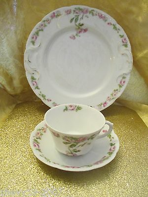 Bassett! Limoges, Austria! Antique Cup & Saucer with Matching Cake Plate!