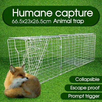 Animal Trap Cage Folding Humane Live Catch Possum Fox Rat Cat Rabbit BirdAU