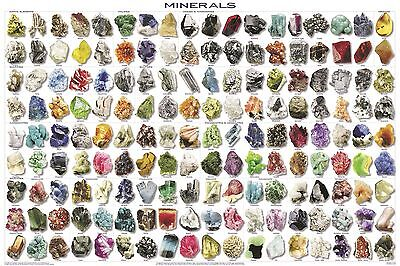 Minerals POSTER (61x91cm) Chart Organic Elements Gemstones Educational Diagram
